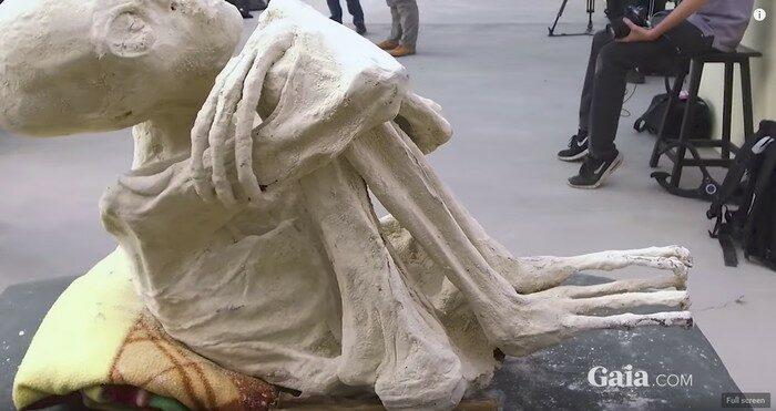 """Maria"", la momia ""humanoide"" de la serie web de Gaia.com Unearthing Nazca (Captura de pantalla de Gaia.com)"