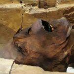 3 momias con historias sobrecogedoras… y una con pasaporte