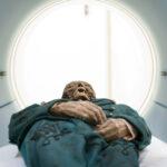 Las momias tienen derechos