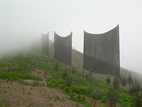 500 litros de niebla