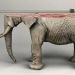 Animales impresos en 3D