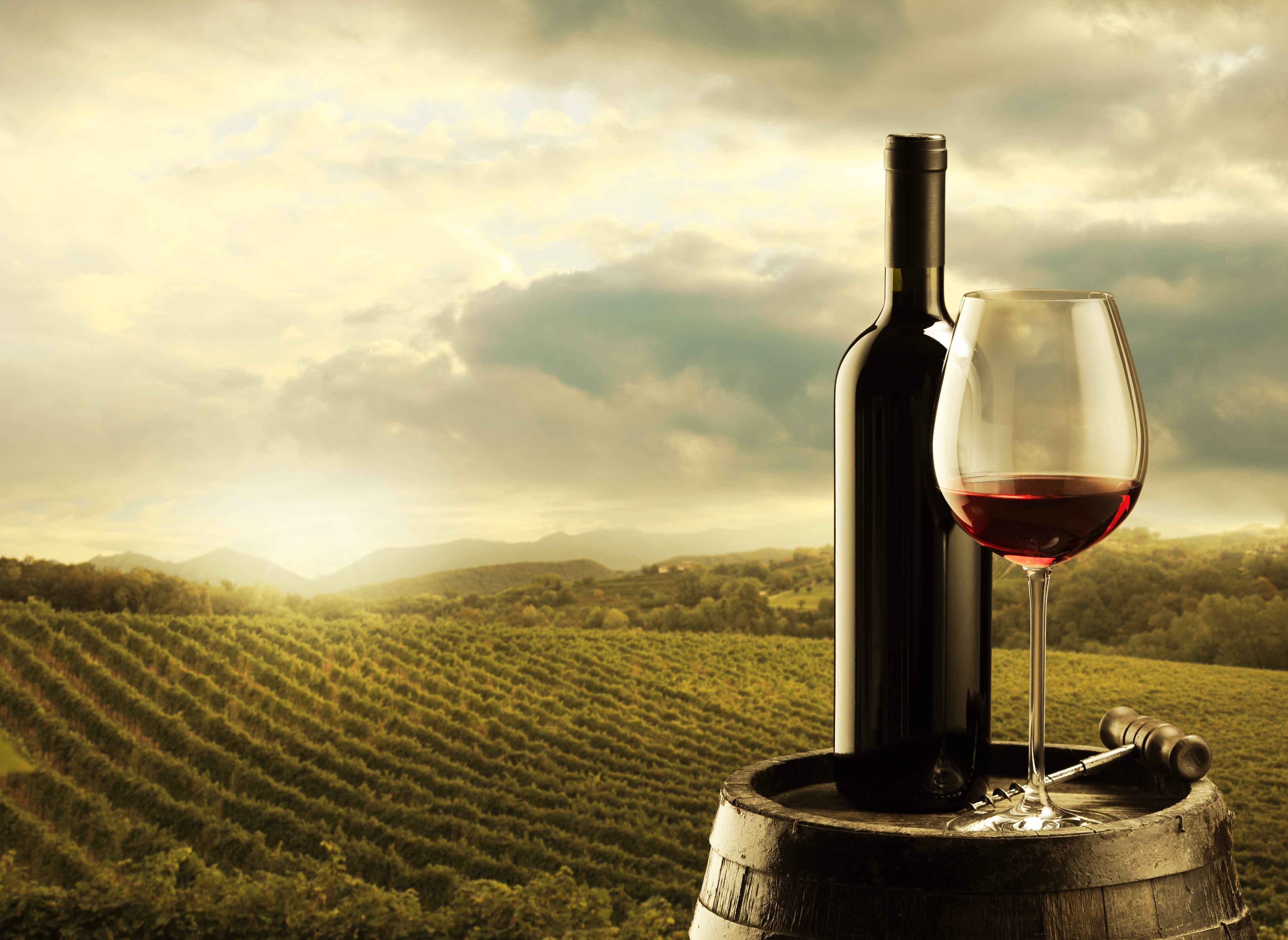 Así afecta el diseño de la copa al sabor final del vino
