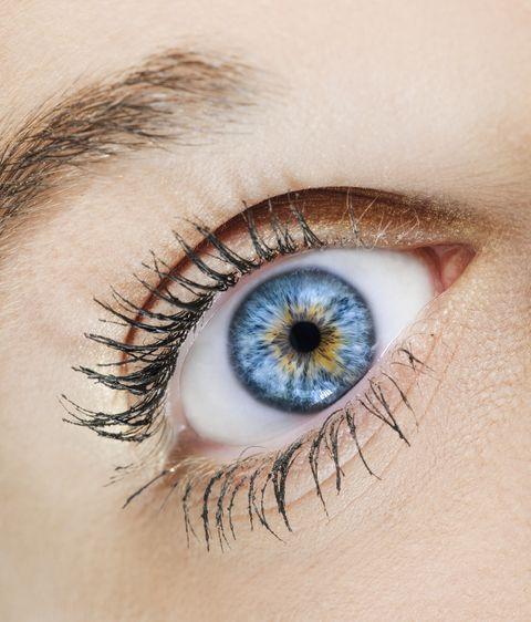 Cómo funcionan los ojos