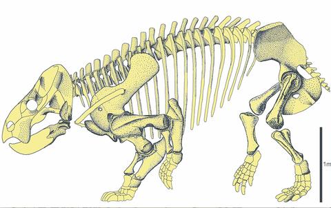 Descubren un gigante mamífero contemporáneo de los dinosaurios