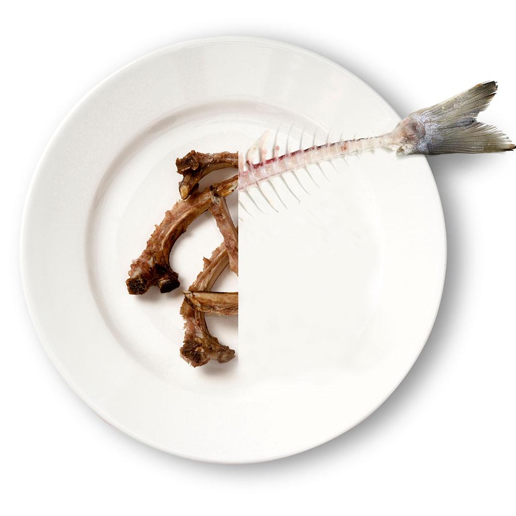 Carne o pescado: qué te conviene más comer, y en qué cantidades