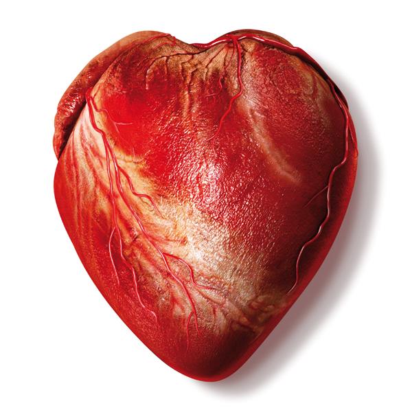 Corazón bioartificial