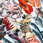Corrupción en las pescaderías: en algunos países más del 20% del pescado que se consume es un fraude