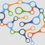 Crean el mapa de las memorias en el cerebro