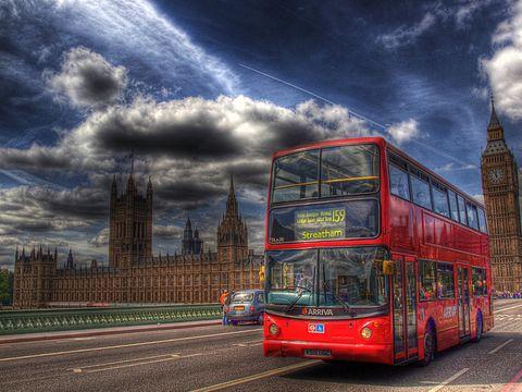 ¿Cuántas tazas de café son necesarias para que un autobús circule 1 año?