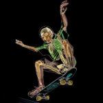 Curso de 'skateboarding' para curiosos