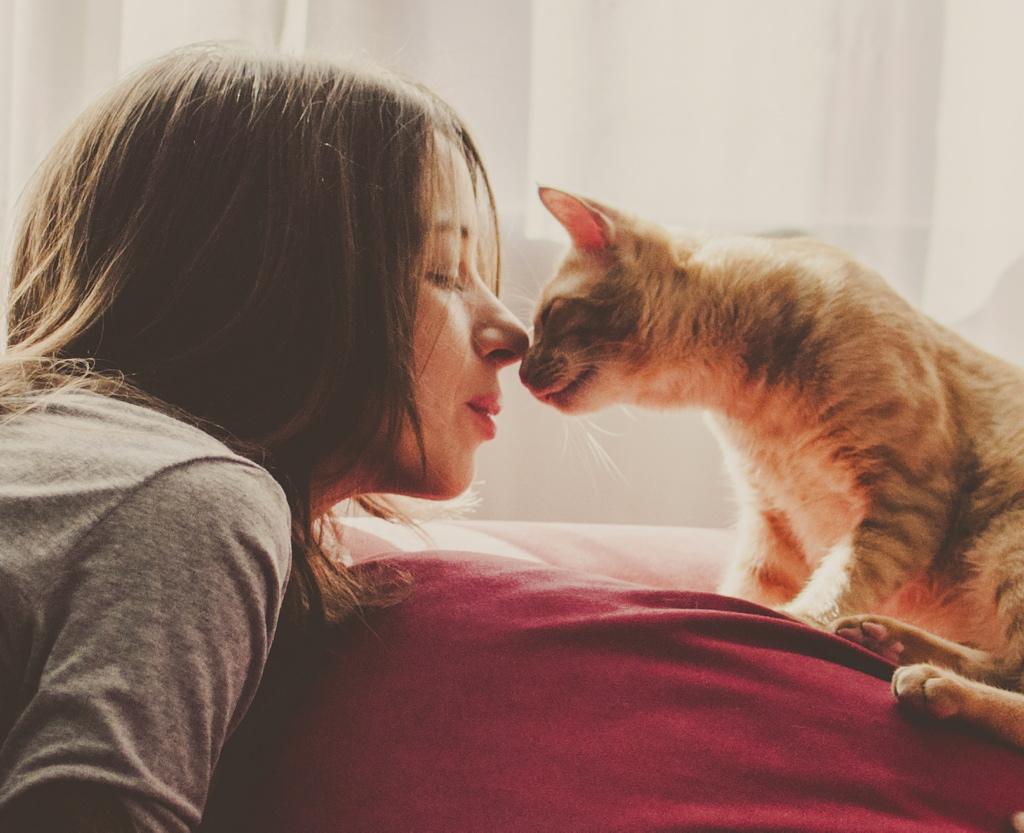 Debes saber una cosa: tu gato es un asesino