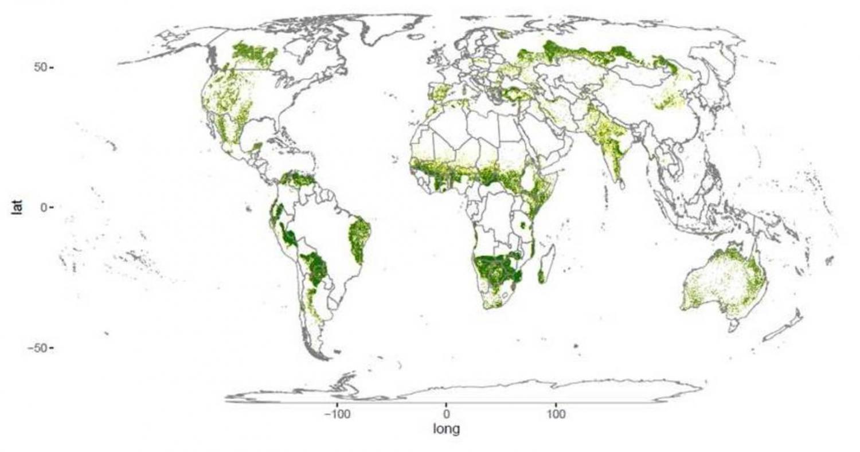 """Descubren"" bosques perdidos: 4,6 millones de km2 de árboles"