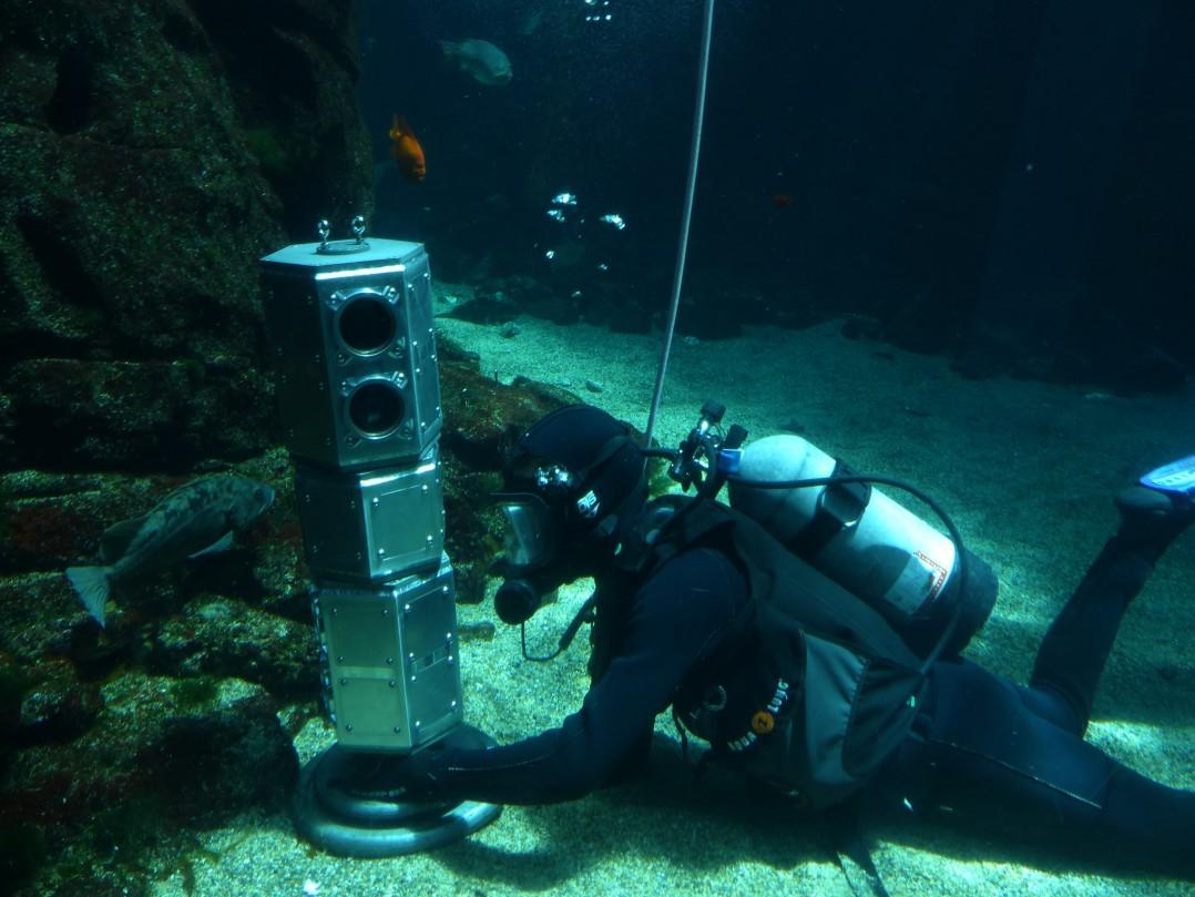 Descubren la esencia de la vida bajo el mar y cerca de España