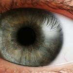 Devuelven la visión a dos pacientes que estaban a punto de quedarse ciegos