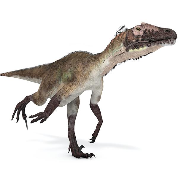 Dinosaurios para llevar