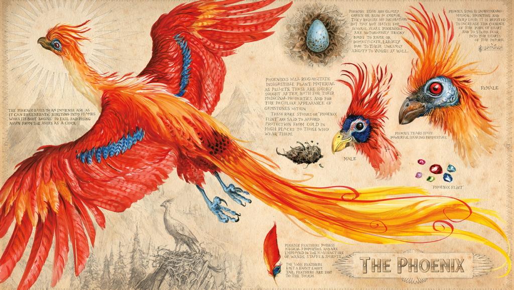 Echa el primer vistazo a este Harry Potter a todo color