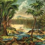 El colapso de los bosques, 300 millones de años atrás, reconfiguró la evolución