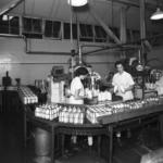 El debate de la leche cruda: ¿qué dice la ciencia?