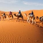 El desierto del Sáhara ha crecido un 10%