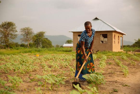 El hambre, una cuestión climática