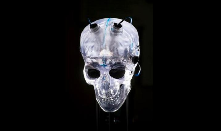 En breve será posible ver cómo desaparece un tumor…en tiempo real