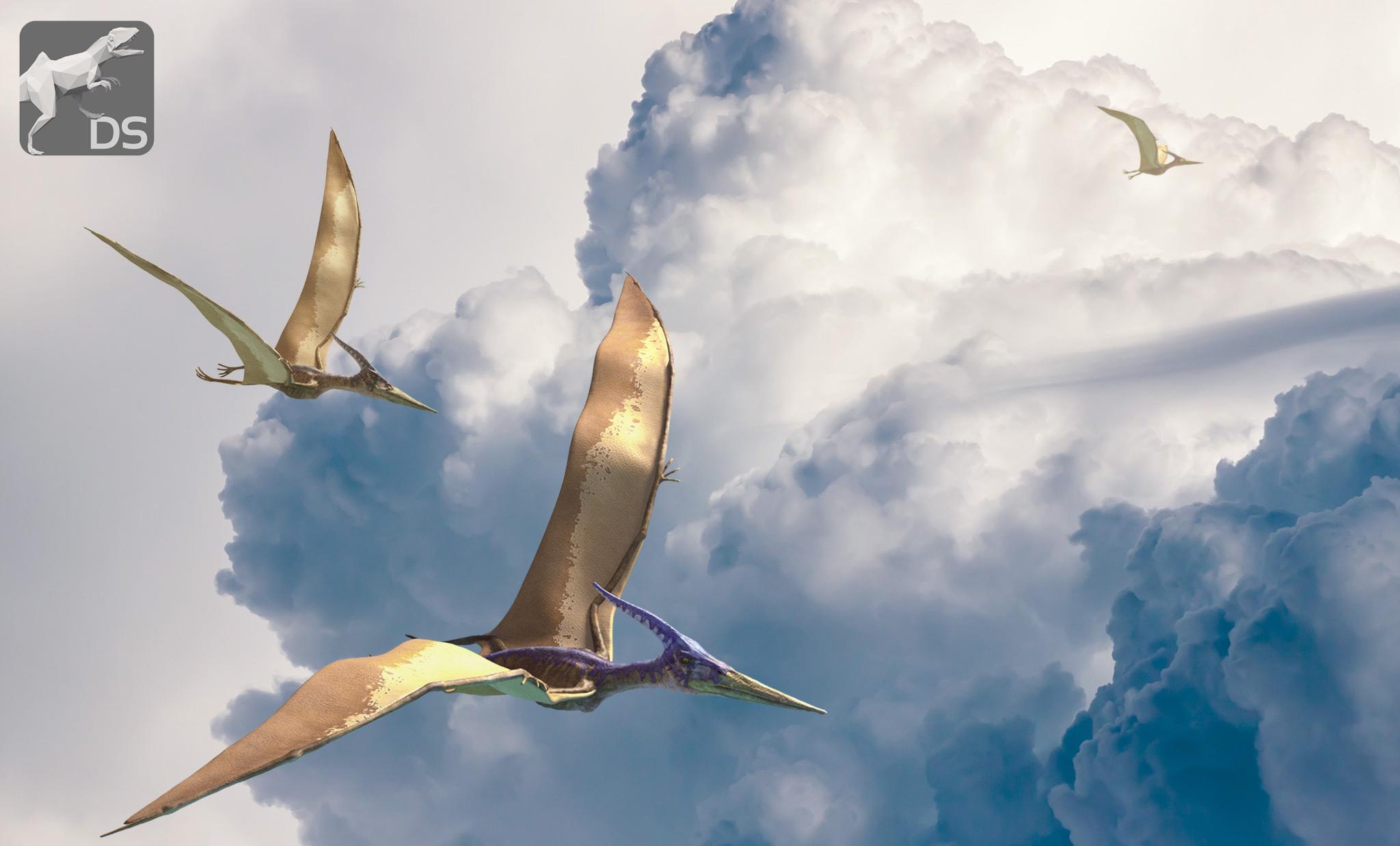 Eran Los Pterosaurios Dinosaurios Voladores Quo El mundo de los dinosaurios explicado para niños con imágenes y video. los pterosaurios dinosaurios voladores