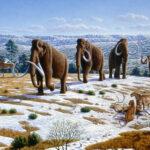 ¿Es posible que los mamuts vuelvan a existir?