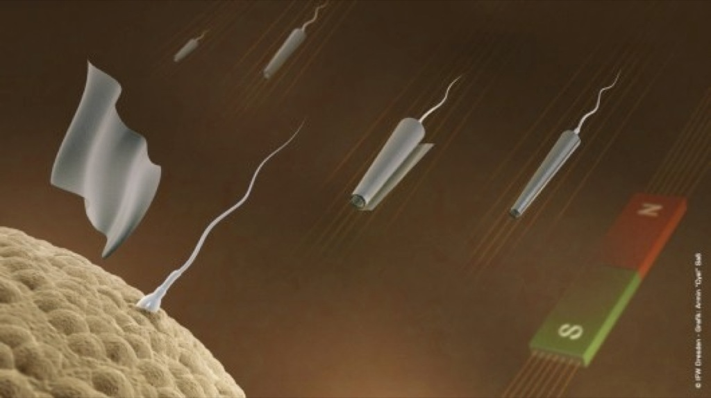 Espermatozoides dirigidos por control remoto