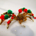 Esta especie de cangrejo decora su caparazón. Pero lo hace por un buen motivo