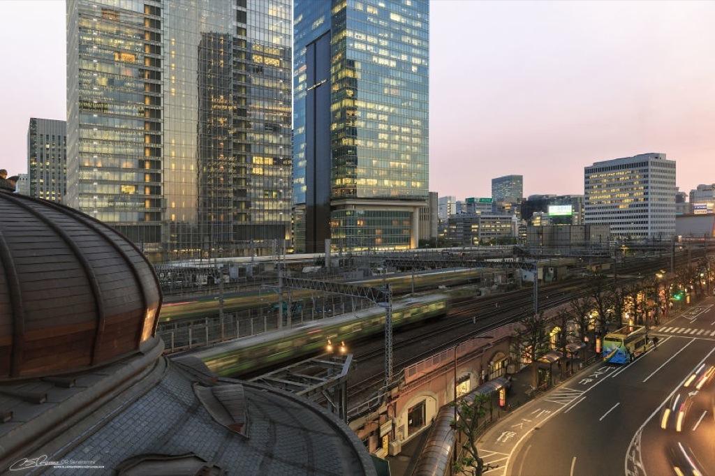 Estas preciosas fotos te harán desear ir a Tokio