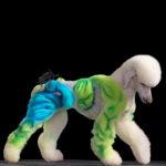 Estética extrema en mascotas: probablemente, ellos nunca lo harían…