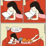 Expectativas vs realidad en la convivencia con un gato
