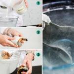 Experimento: Fabrica hidrógeno casero