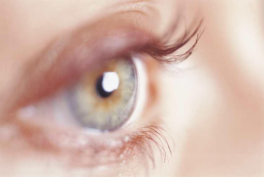 Genes sanos, ojos sanos