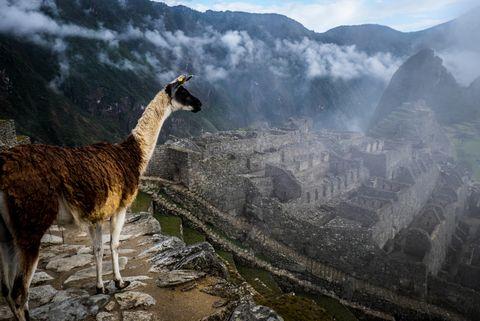 Machu Picchu estuvo a punto de ser destruido por un terremoto