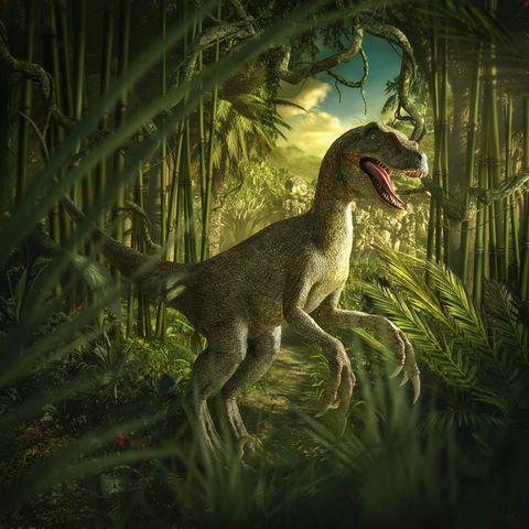 Los dinosaurios tenían superpulmones