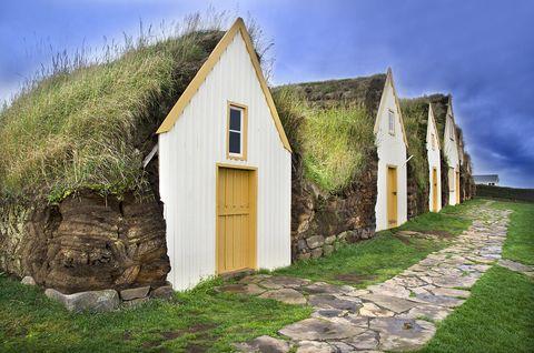 ¿Qué tipo de raíces debes usar para construir tu eco casa?