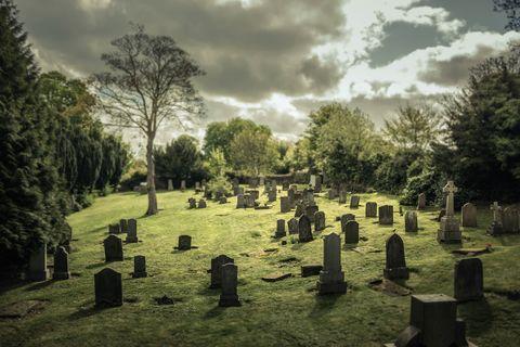 Expertos británicos proponen una espeluznante manera de enterrar a nuestros muertos