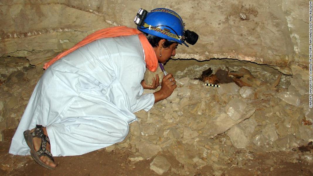 Hallan ocho millones de perros momificados en catacumbas egipcias