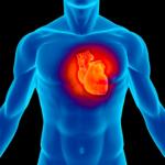 Hallan vinculo entre gripe y ataques al corazón