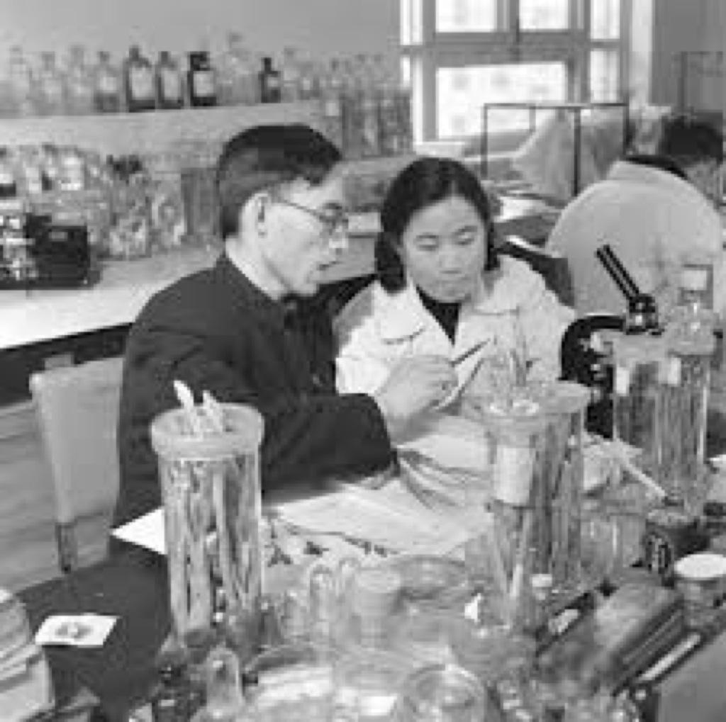 ¿Han premiado con el Nobel a la medicina tradicional china?