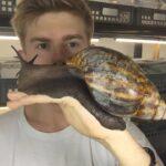 ¿Has visto alguna vez un caracol de este tamaño descomunal?