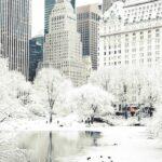 ¿Hasta qué punto hace frío en EEUU o Canadá? Estas imágenes lo dicen todo