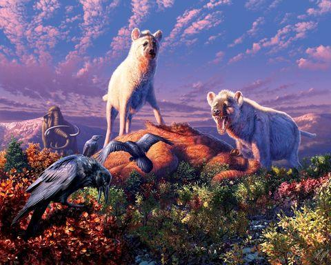 Cuando las hienas vivían en el Ártico