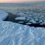 La Antártida, ¿un refugio climático?