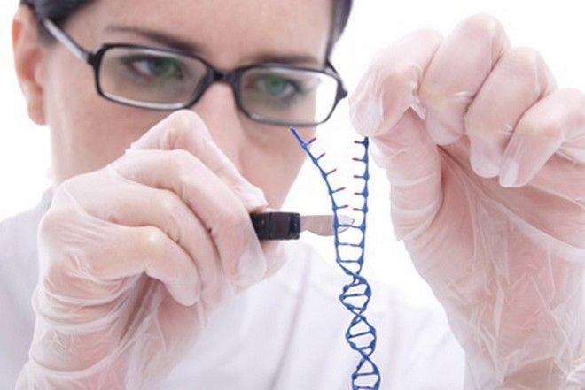 ¿La cura para las enfermedades genéticas?