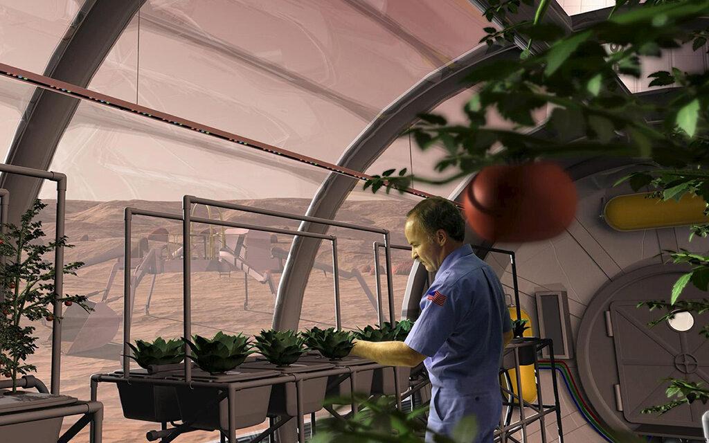 Así se cultivan las plantas en el espacio