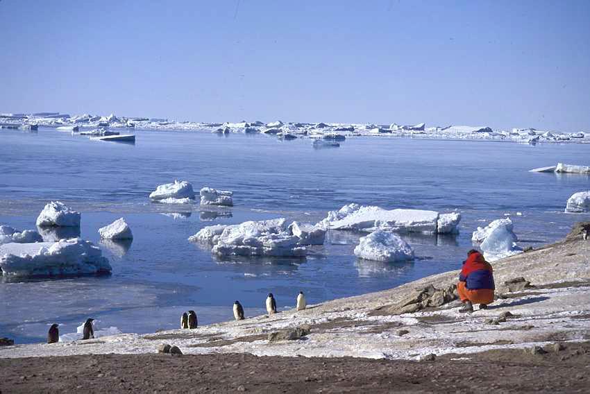 La Antártida no se deshiela