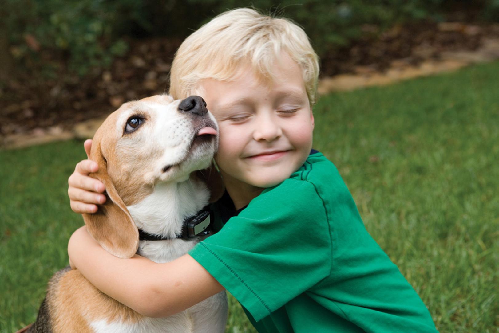Las mascotas ayudan a que los niños no sean alergicos