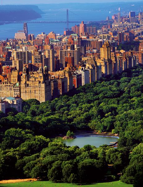 Las ciudades son más verdes que el campo